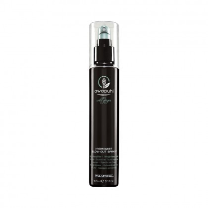 Paul Mitchell Awapuhi Wild Ginger HydroMist Blow Out Spray