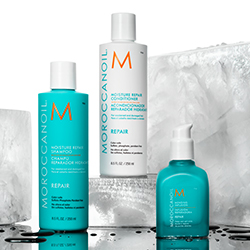 Shop Moroccanoil Repair