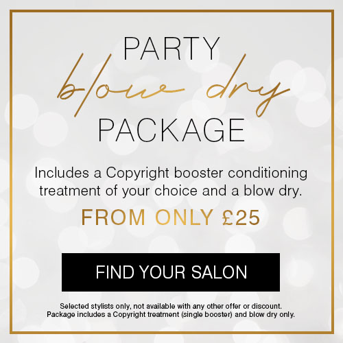 Christmas Blow Dry Package