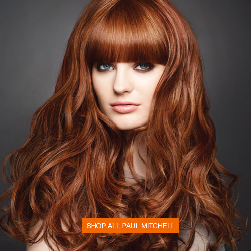 paul mitchell haircut prices what brand of hair color does regis salon use sebastian 4628