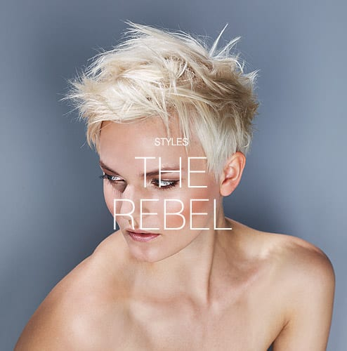 Styles - The rebel