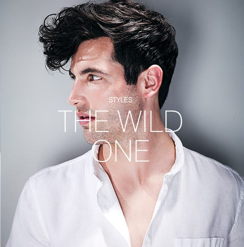 Styles - The wild one