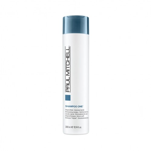 Regis Winter Haircare Paul Mitchell Shampoo One