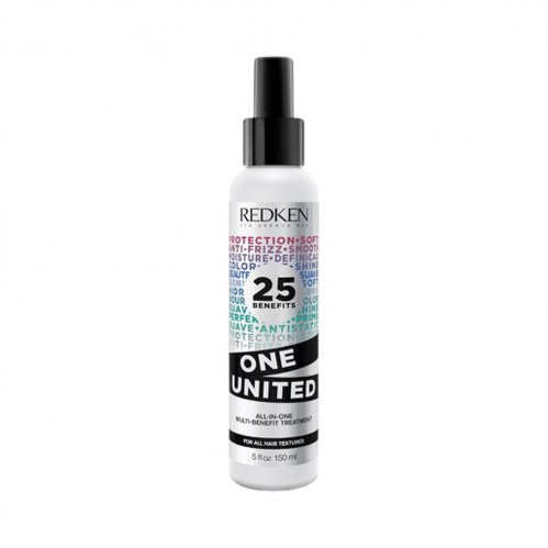 Regis Winter haircare Redken One United