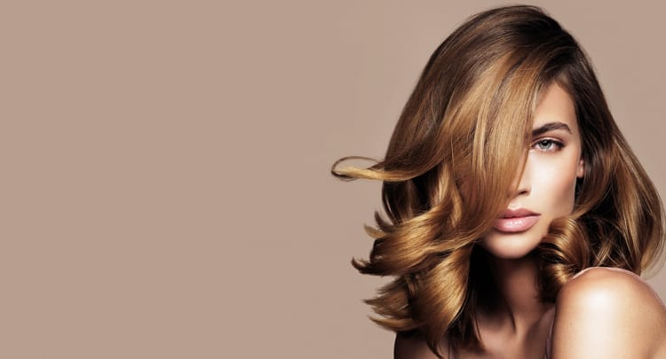 The Blow Dry Bar Blow Dry Services
